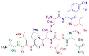 vzorec oxytocinu